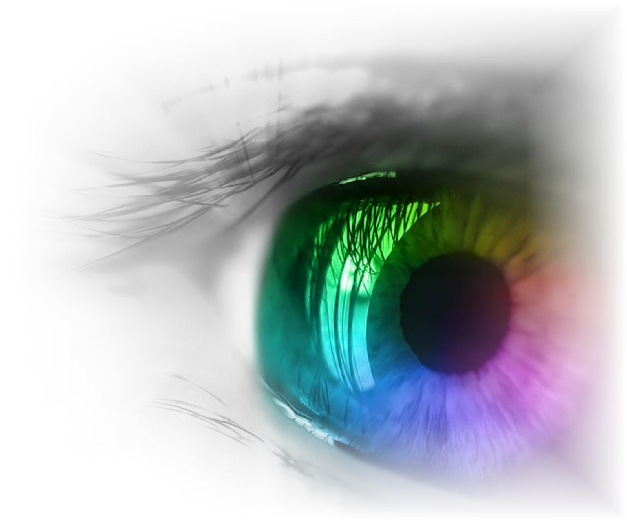 An eye for an eye makes the world blind essay writer